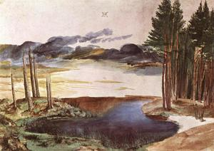 Albrecht Durer - Pond in the Woods
