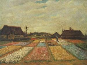 Vincent Van Gogh - Campos do bulbo