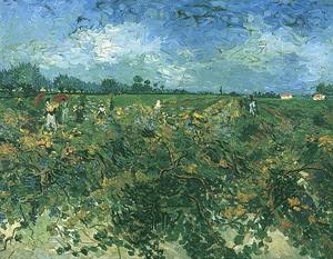 Vincent Van Gogh - Verde Vineyard o
