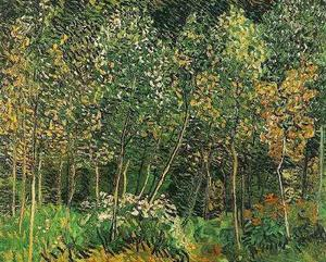 Vincent Van Gogh - bosque o