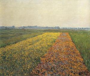 Gustave Caillebotte - o amarelo campos na `gennevilliers