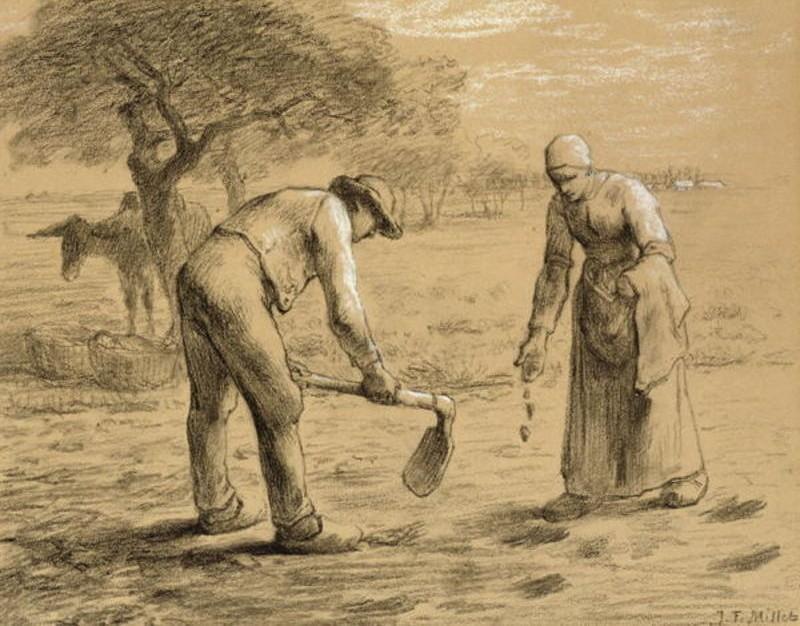 Resultado de imagem para imagens de camponeses