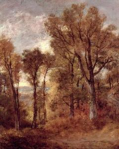 John Constable - Woodland Ver em Suffolk