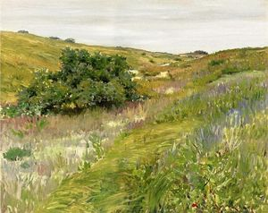 William Merritt Chase - Paisagem , Shinnecock Colinas