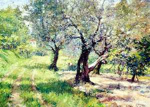 William Merritt Chase - o oliveira bosque