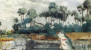Winslow Homer - Preto Graves , Florida