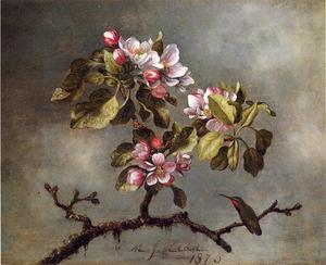 Martin Johnson Heade - Apple Blossoms e Hummingbird