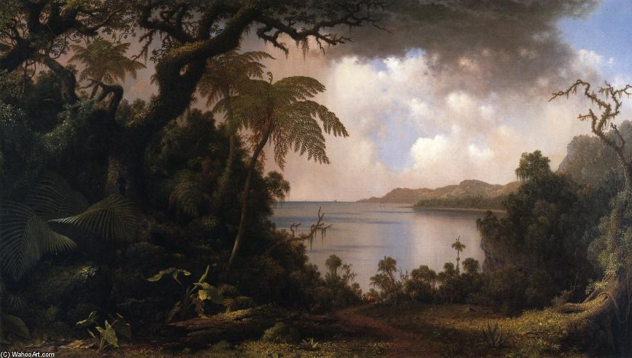 Vista Fern-Tree Caminhar , Jamaica, óleo sobre tela por Martin Johnson Heade (1819-1904, United States)