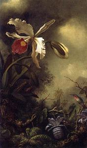 Martin Johnson Heade - A orquídea branca e Hummingbird