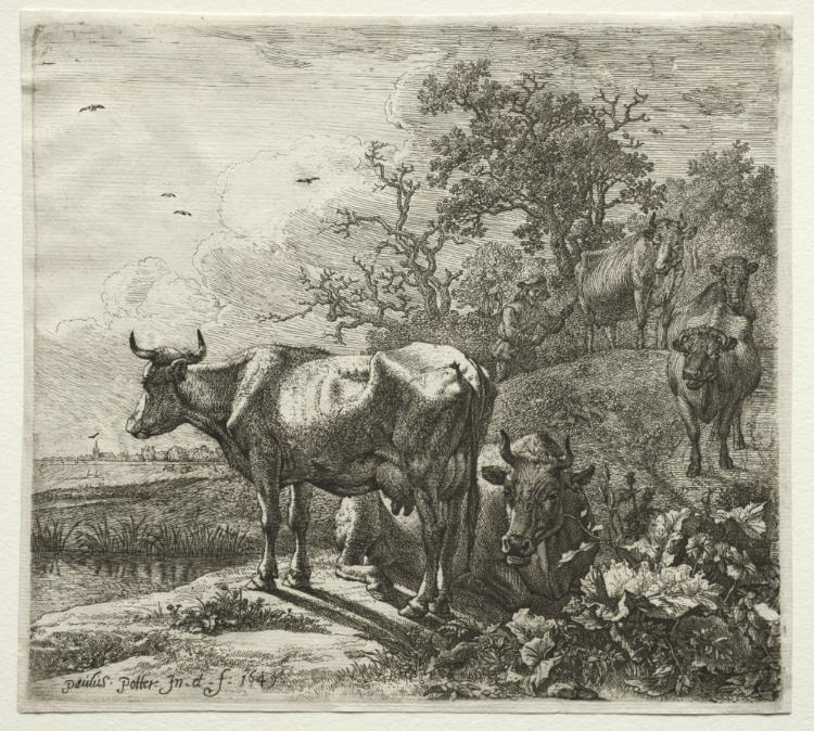 O Cowherd por Paulus Potter (1625-1654, Netherlands)