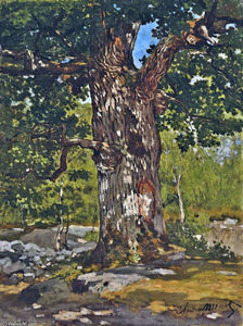 Claude Monet - O Oak Bodmer