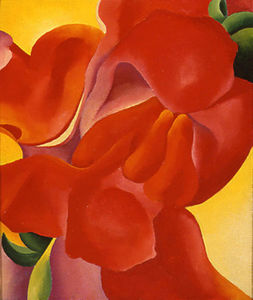 Georgia Totto O-keeffe - red canna