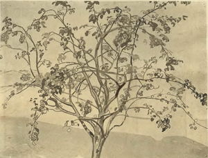 Nicholas Roerich - A Apple tree