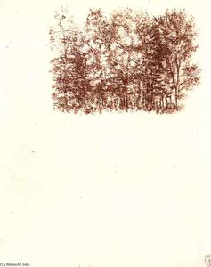 Leonardo Da Vinci - Birch bosque