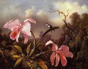 Martin Johnson Heade - Orquídeas e Hummingbird