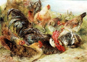 William Huggins - poultry_2