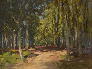 William Bradley Lamond - floresta pista