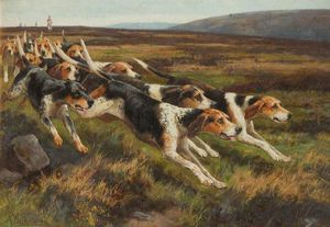 Alfred Duke - Os Holcombe Harriers