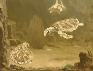 Gerrit Willem Dijsselhof - Turtles