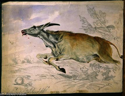 Eland correndo de Damara com lança por Thomas Baines (1820-1875, United Kingdom)