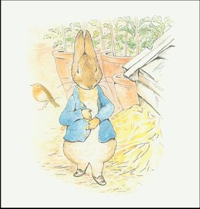Beatrix Potter - Peter 10a coelho - (11x11)