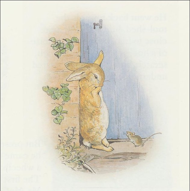 Peter 23a coelho - (11x11) por Beatrix Potter (1866-1943)