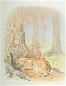 Beatrix Potter - Peter 29a coelho - (11x13)