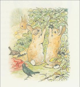 Beatrix Potter - Peter coelho 7a - (11x11)