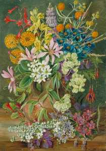 Marianne North - flores silvestres de chanleon , Pimenta