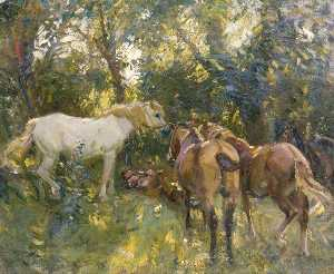 Alfred James Munnings - o com sombra  bosque