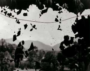 Aaron Siskind - Carolina do Norte 9