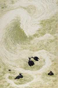 Janet E Turner - surf scoters