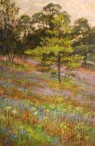 George Cartlidge - Bluebells , Penhasco Parque , Rudyard