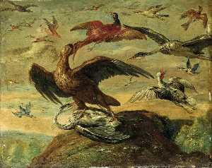 Jan Van Kessel The Elder - aves