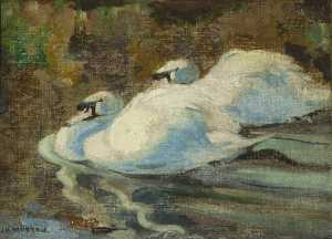 James Hargreaves Morton - cisnes