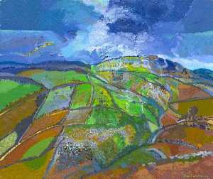Alan Richards - depois da chuva , Widecombe , Devon
