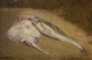 David Cox The Elder - estudo de peixe  patins  e  bacalhau
